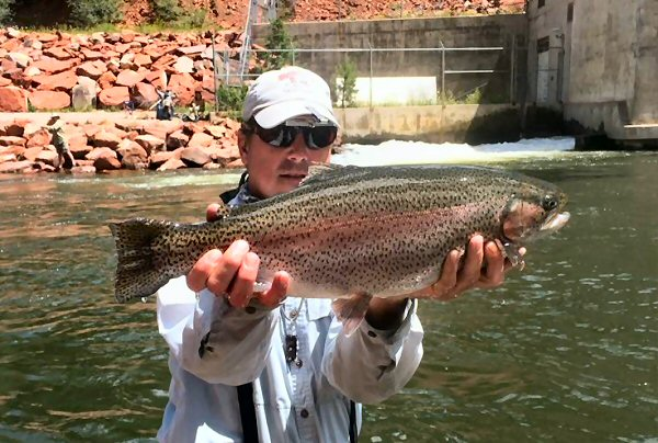 Frying Pan Anglers Frying Pan Roaring Fork And Colorado