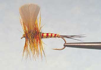 Pan Fry | Fly Tying Contest